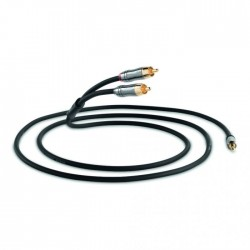 Performance graphite Jack 3.5mm - RCA (1.5m)